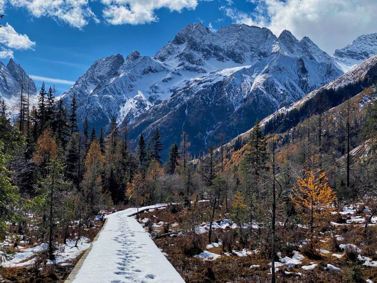Snow covered boardwalk Shuangqiao Valley