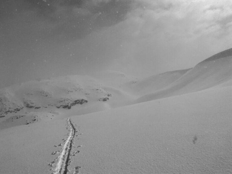 Hannah Green - Weminuche ski traverse - ski tracks in the wind
