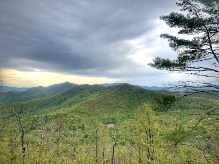 View on the Duncan Ridge Trail