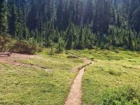 Trail Transitions: Become a Trail Runner
