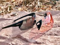 Smith Attack Sunglasses Review