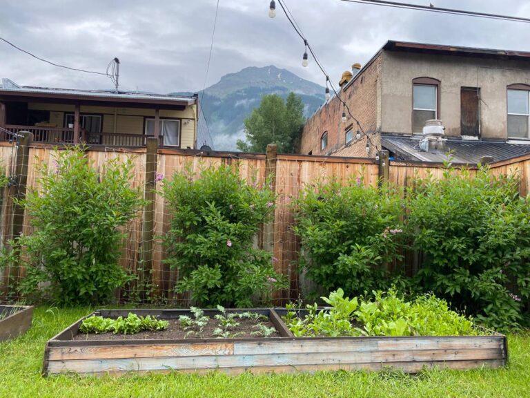 Mount Kendall - garden meditation view