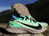 Nike Pegasus Trail 2 Standard and GORE-TEX Reviews