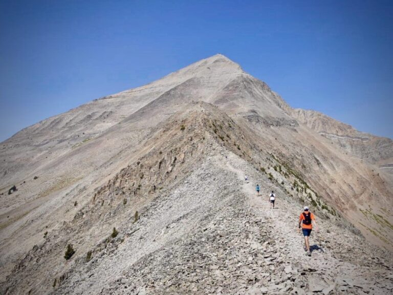 2021 The Rut 50k - Lone Peak scenery