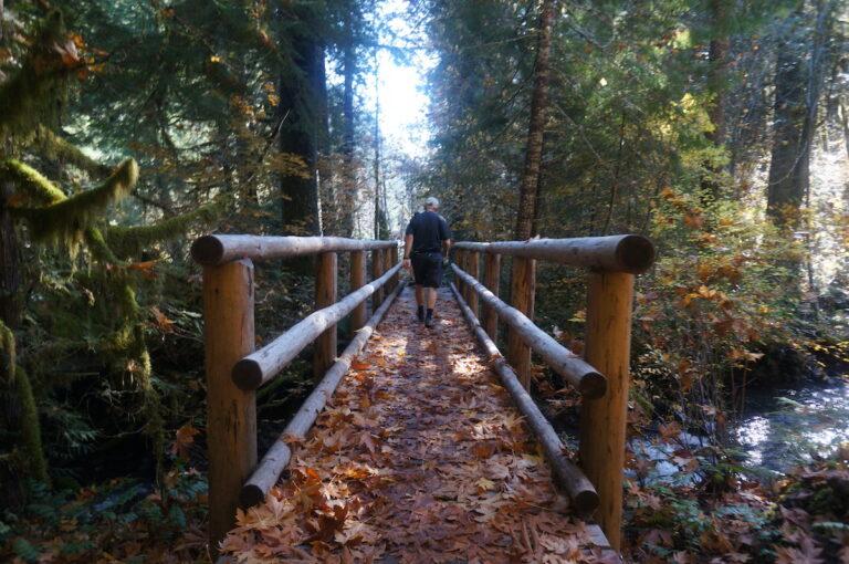 McKenzie River Trail Run Jared Hass
