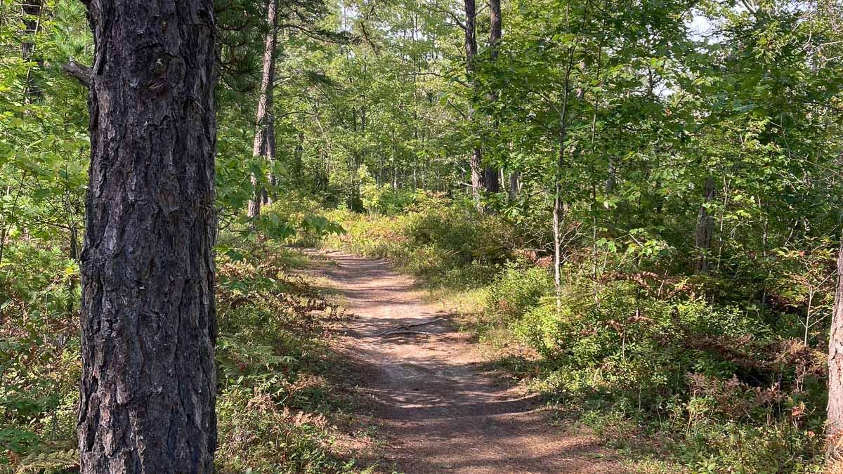 Sandy Stott Trail Poem Feature-2
