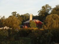 A 12-Hour Day at the Red Barn Challenge