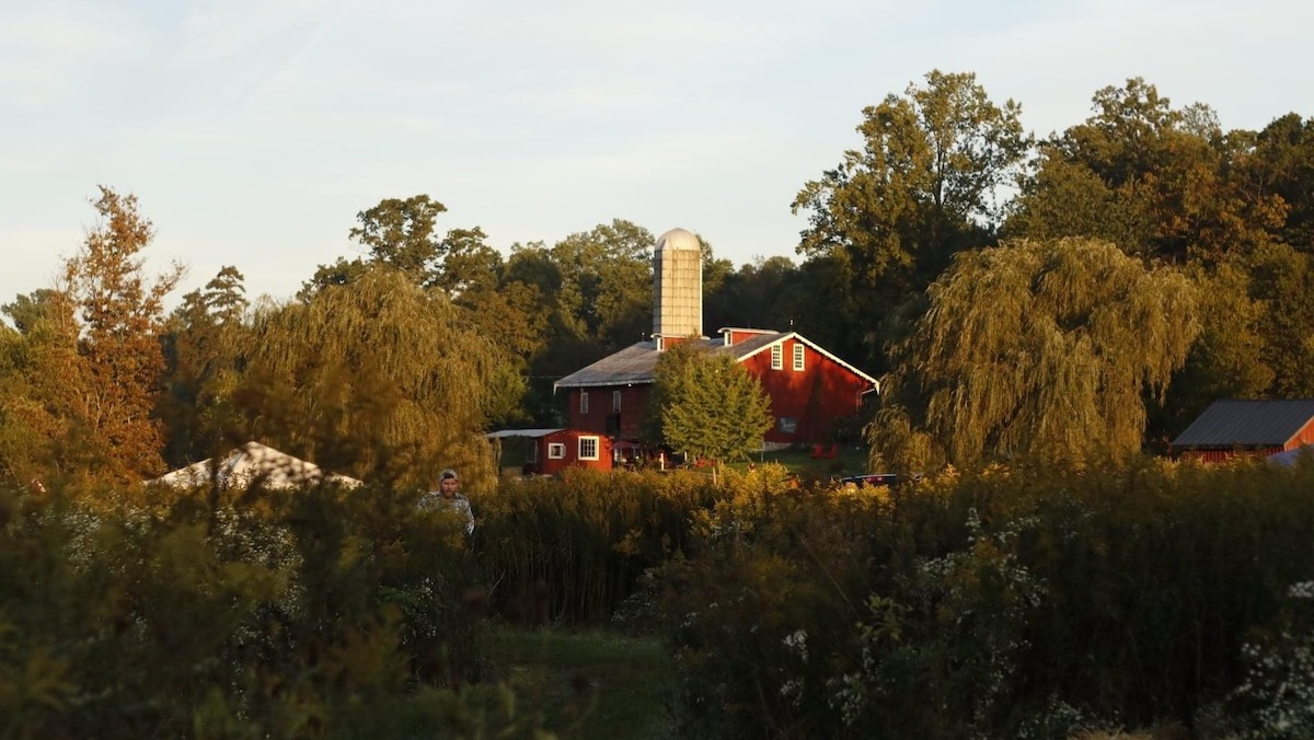 Red Barn Challenge - Becky Campbell Photography - Feature