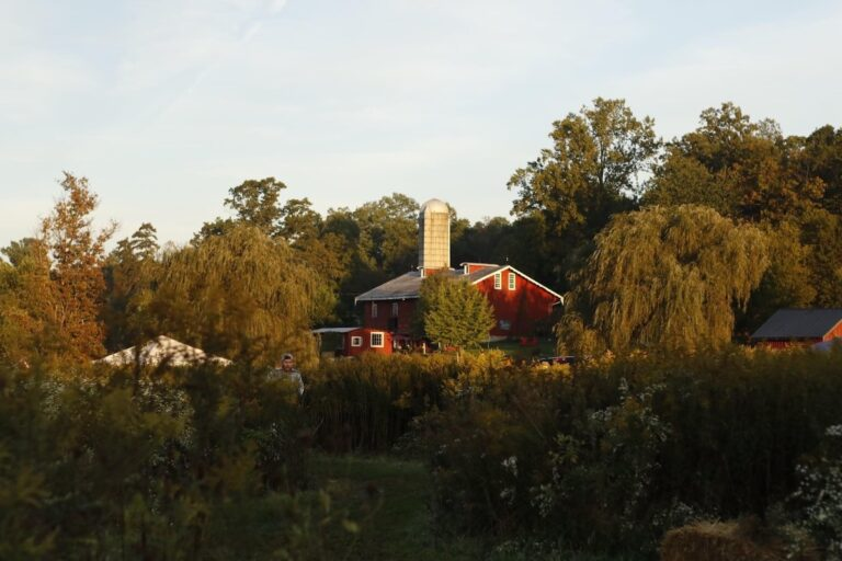 Red Barn Challenge - Becky Campbell Photography