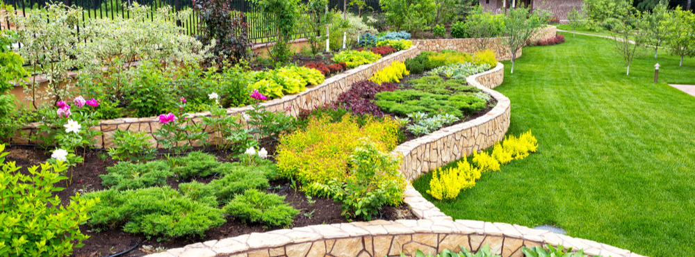 Landscaping 101 The Beginner S Guide Landscape Design