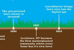lawn-care-guide-chapter-1-lawn-care-history