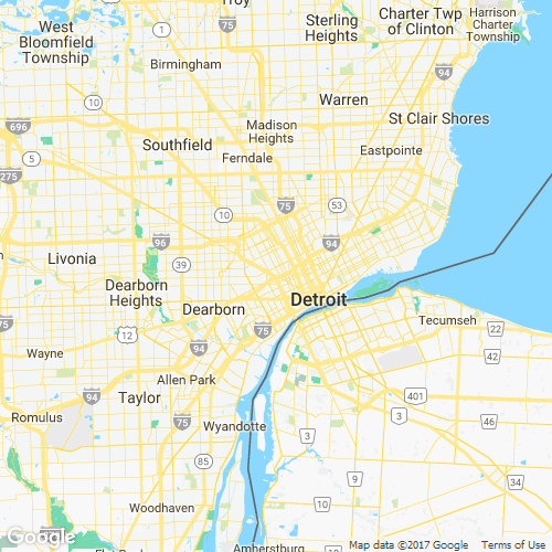 greater detroit area codes