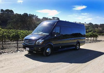 Mercedes Sprinter Wine Tour Photo