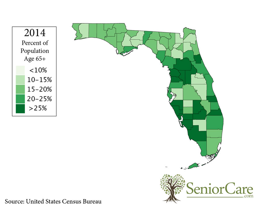 Florida 65+ Population by County