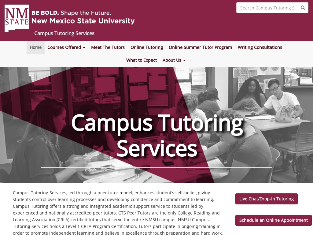 Campus Tutoring Services New Mexico State University Traffic Stats