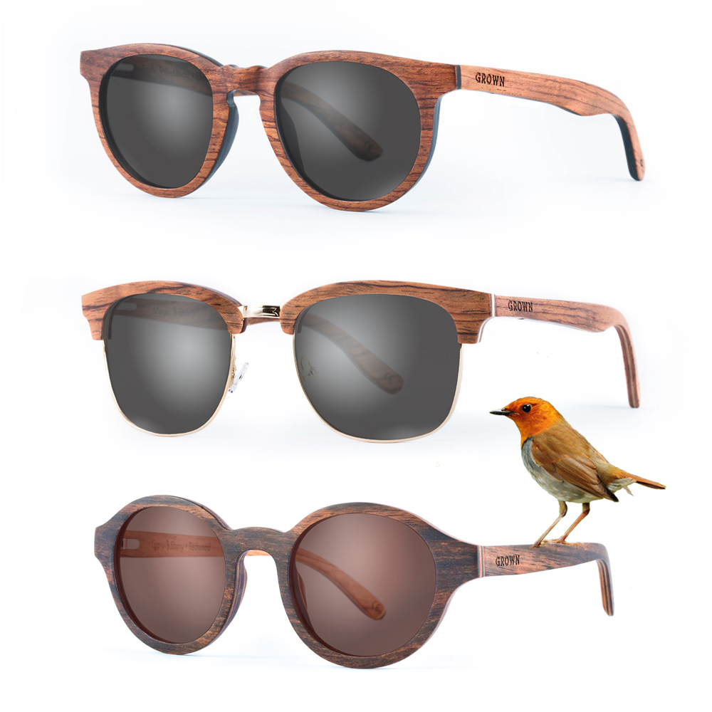 starting-a-wooden-sunglasses-brand-and-getting-on-shark-tank