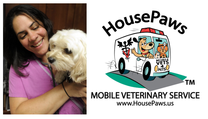 how-i-started-a-580k-month-mobile-veterinary-service