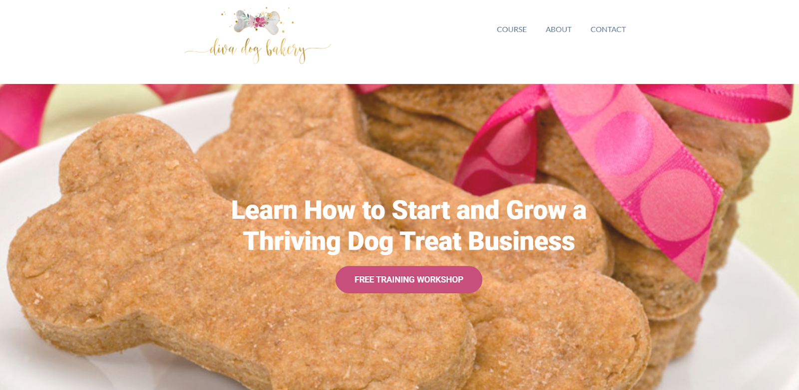 how-i-created-a-11k-month-online-course-about-how-to-start-and-grow-a-dog-treat-business