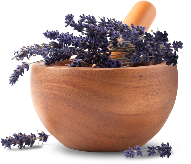 Bulk-Apothecary-bowl-lavender