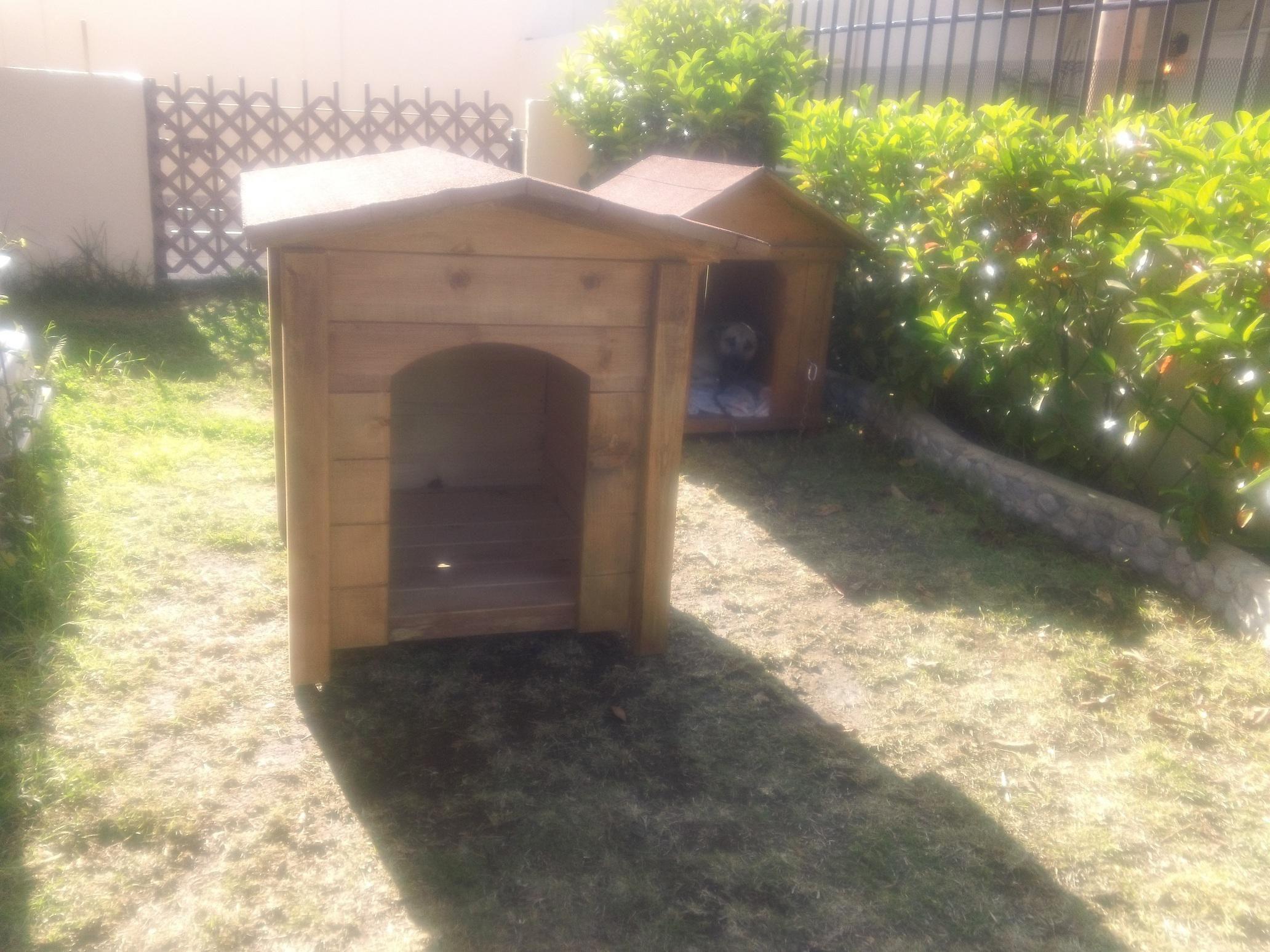 Perreras car interior design for Casas para perros