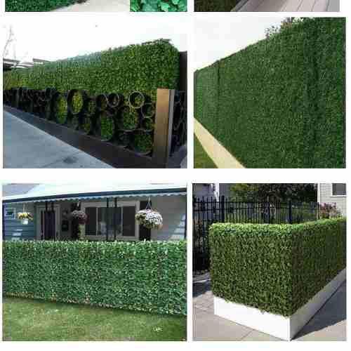 Mallas Cercas Y Muros Verdes