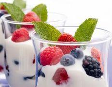 Probióticos Kéfir Yogurt Búlgaros de leche SCOBY Kombucha