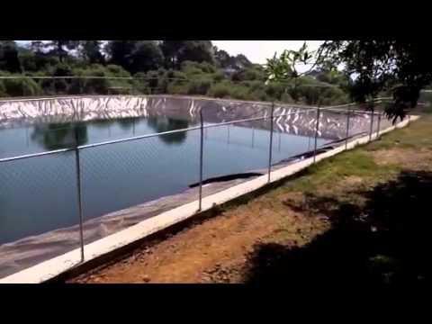 Venta de geomembrana hdpe geotetil estanques circulares for Estanques de geomembrana para tilapia
