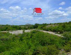 liberia, bagaces 0012