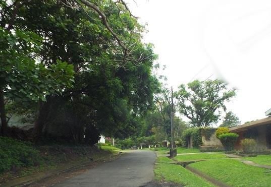 san-jose, Calle 8 1