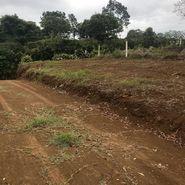 naranjo, Pan American Highway 1