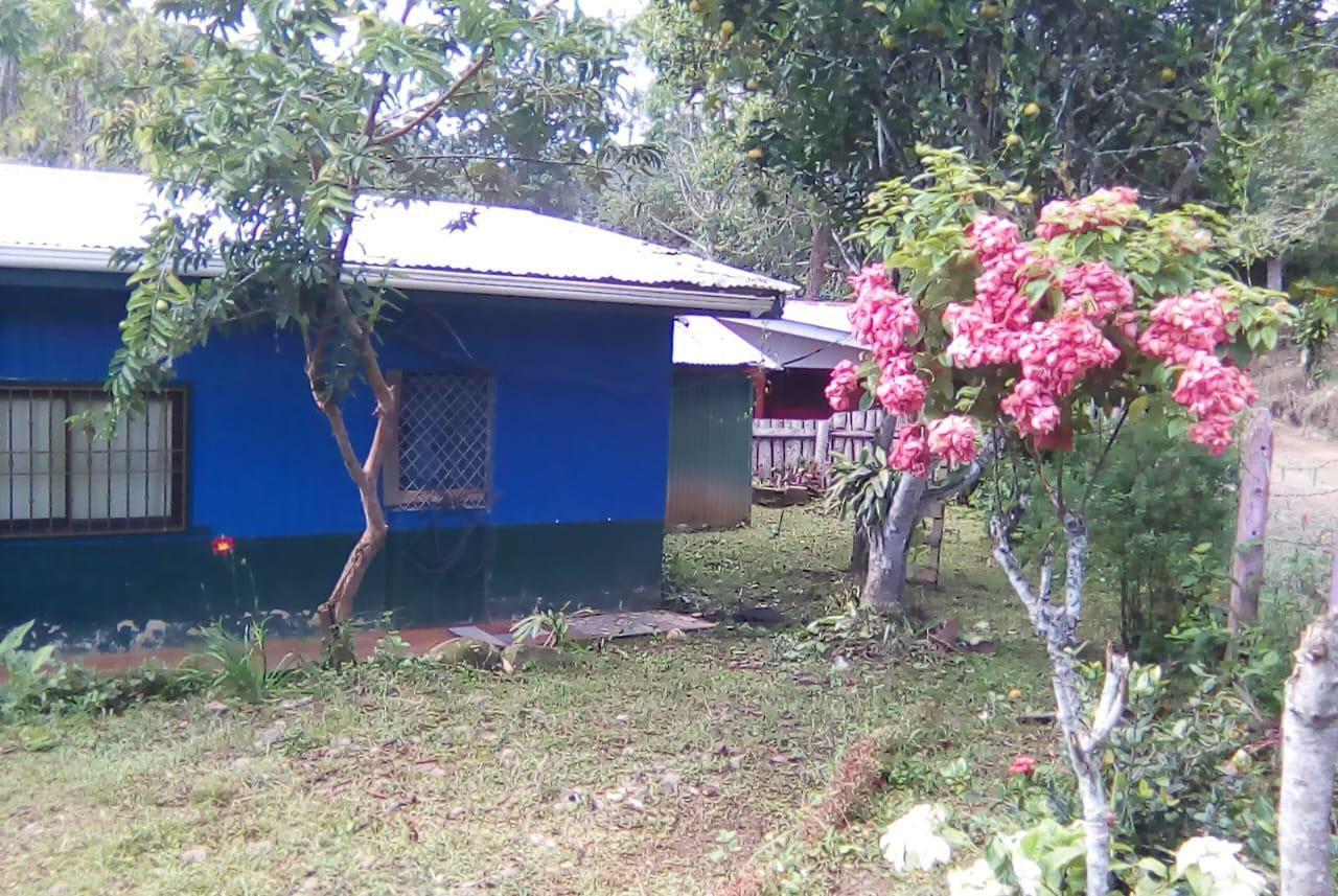 daniel-flores, La zuisa Daniel Flores Perez Zeledón 11
