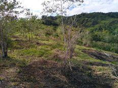 turrialba, Monte Sión 2