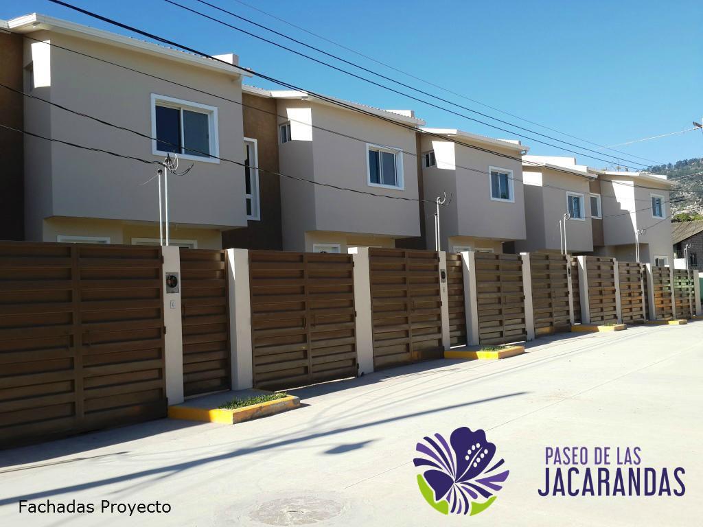 tegucigalpa, paseo-de-las-jacarandas-el-manchen 8