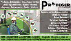 Fumigacion en Cabimas, Maracaibo y Ojeda