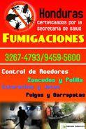 Fumigaciones a Nivel Nacional (3267-4793/9459-5600)