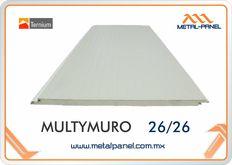Multymuro Puebla