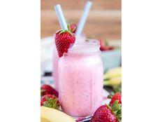 Yogurt Natural Kéfir con Bulgaros de Leche Tíbicos de Agua y Hongo SCOBY Té Kombucha