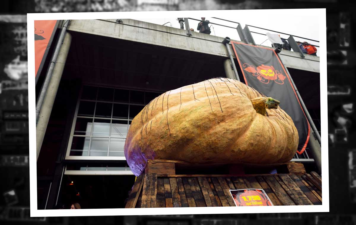 The record-breaking 1,790-pound pumpkin at the 2017 Great Pumpkin Beer Festival (Credit: Victoria Wright)