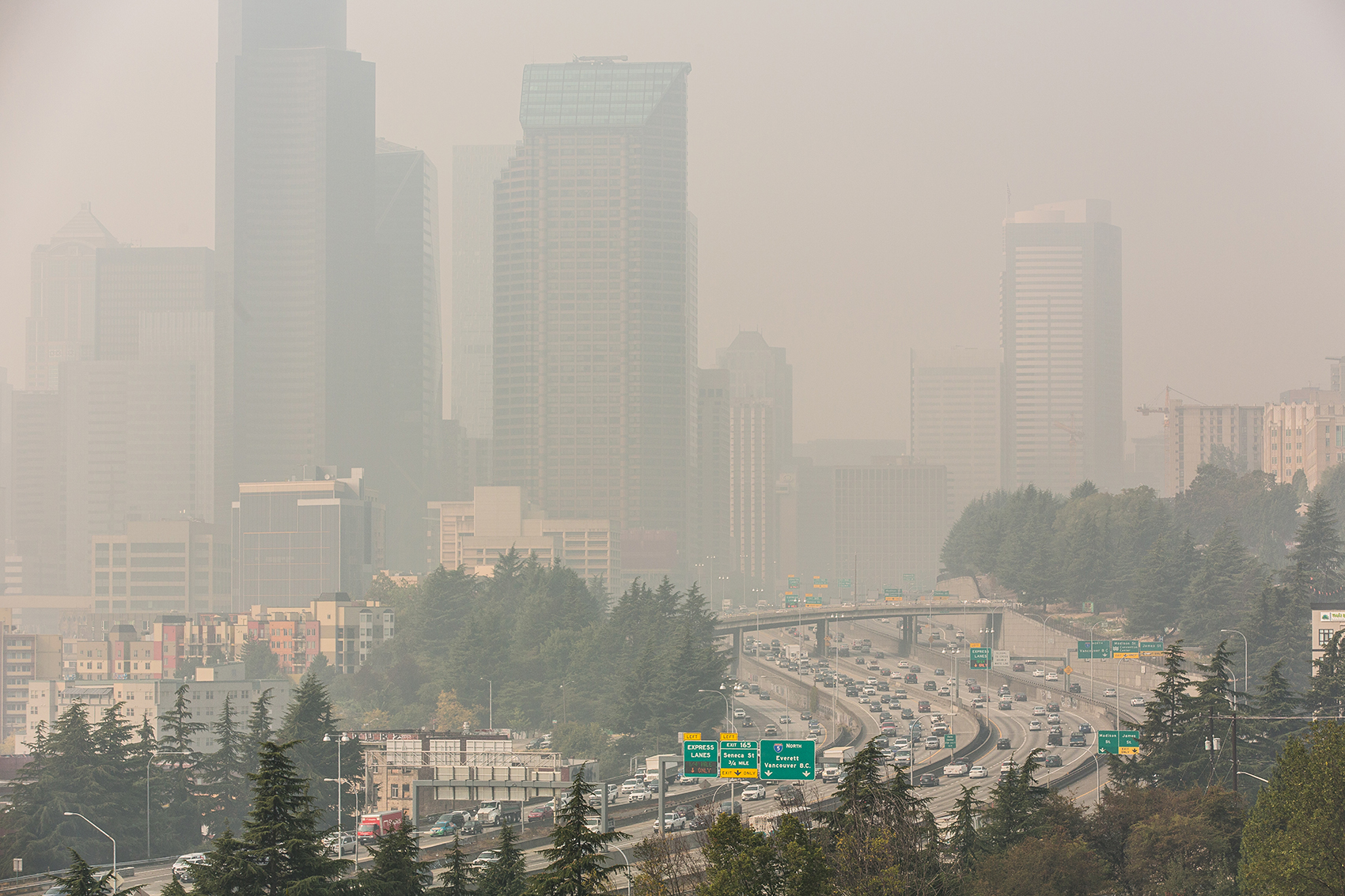Smoky Skies, Altered Lives