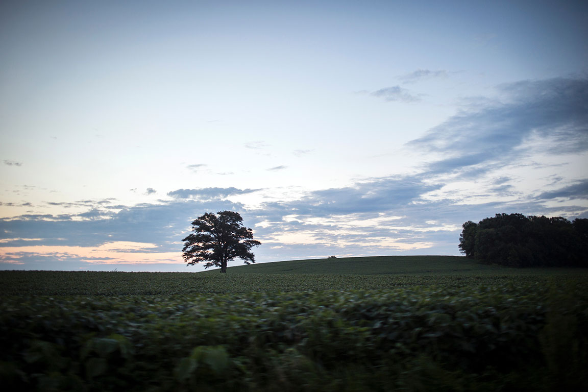 A field outside of Jasper, Indiana on Wednesday, Aug. 2, 2017.