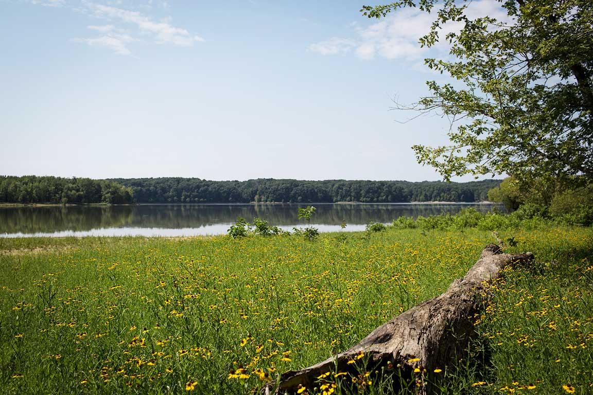 Lake Monroe outside of Bloomington, Indiana on Wednesday, Aug. 2, 2017.