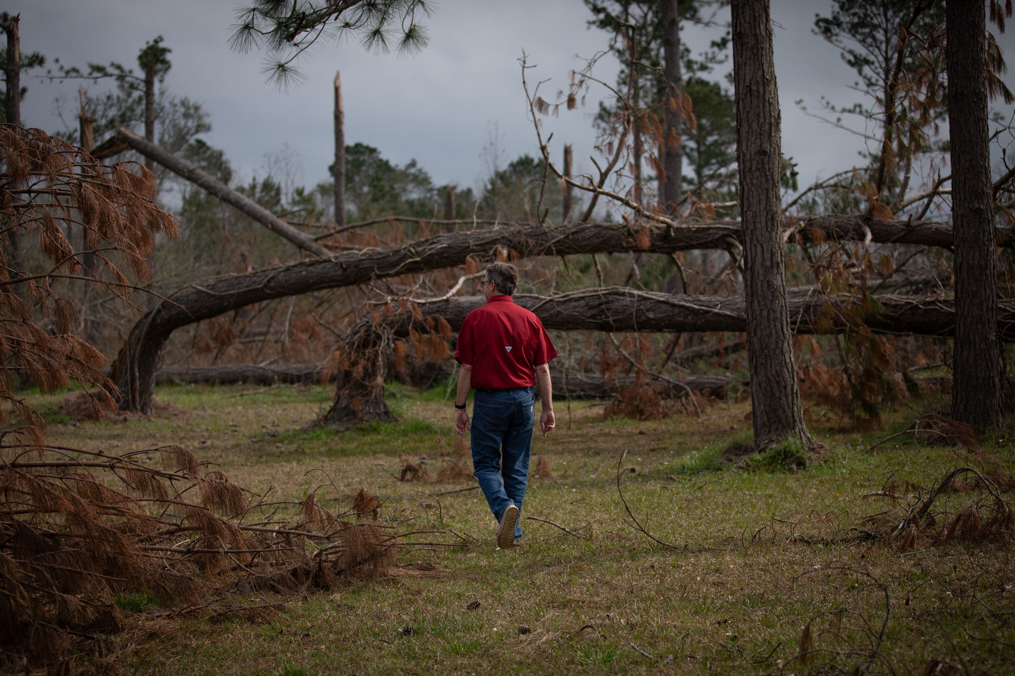 Harvest: Recovery and Risk after Hurricane Michael - Collateral - The Weather Channel
