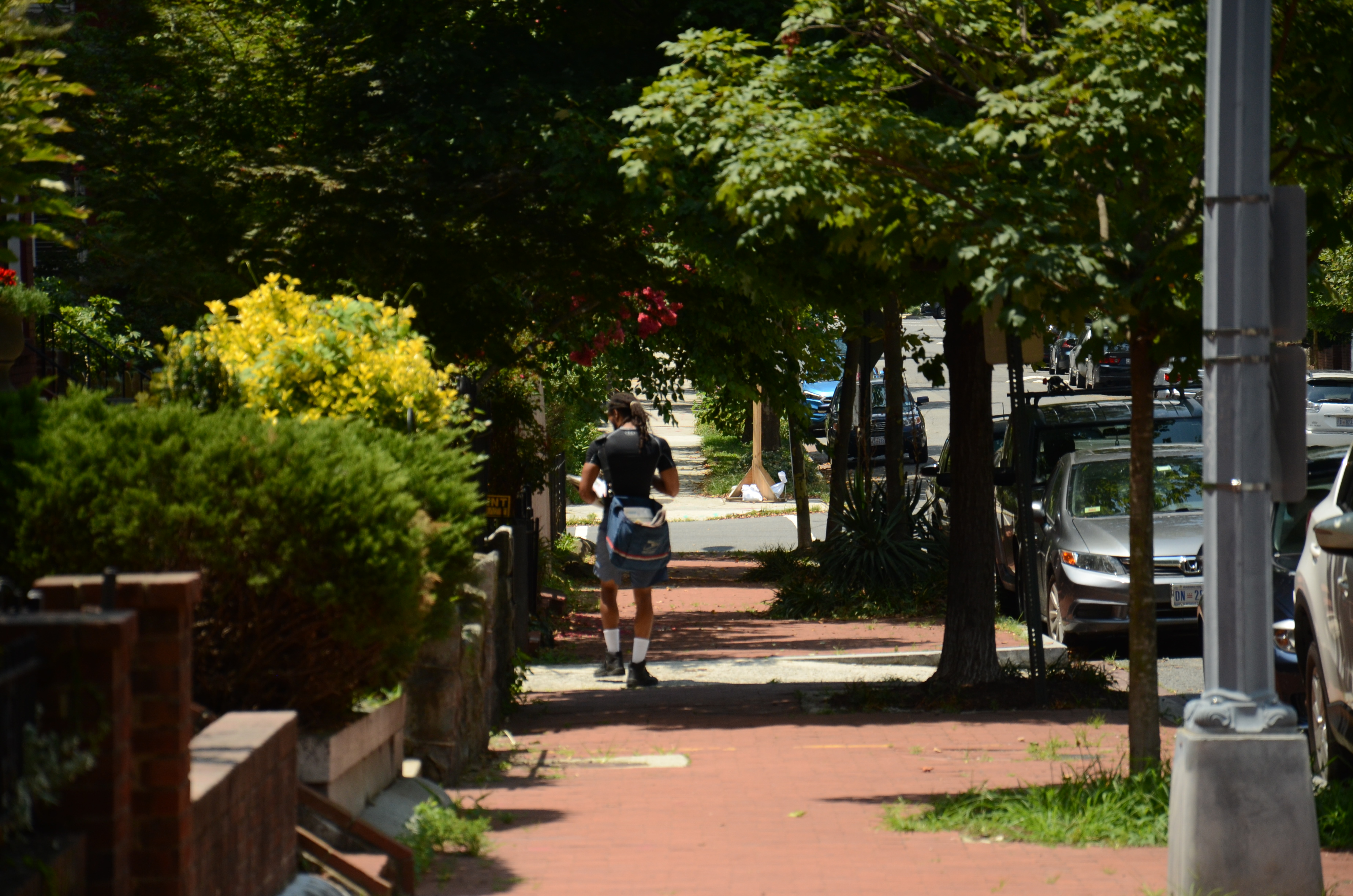 Extreme Heat Doesn't Stop the Mail, Even at the Cost of Postal Workers' Health