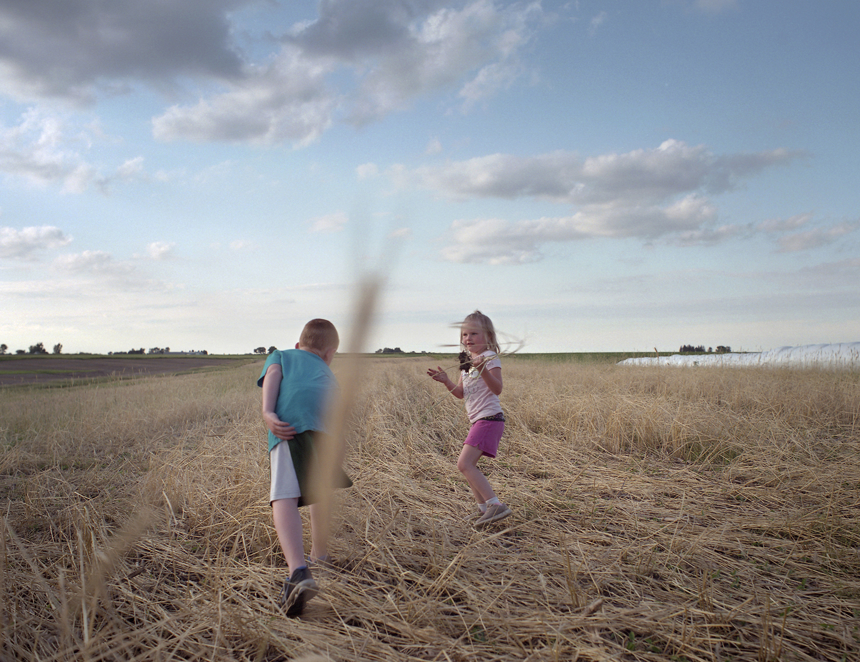 Children play in Tim Sieren's cover crops while the Practical Farmers of Iowa group meet about conservation implementation.