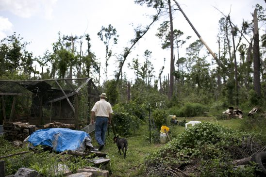 Robert Daffin surveys the destruction in his backyard still evident nine months after Hurricane Michael.