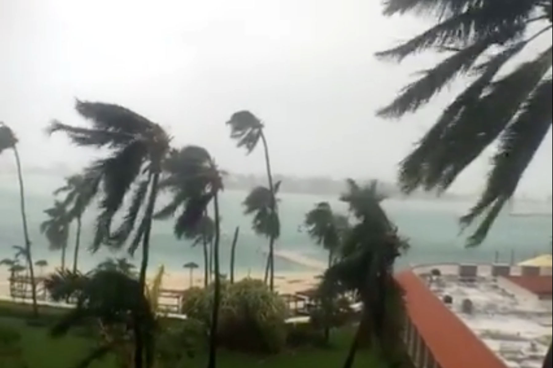 caribbean - facebook live