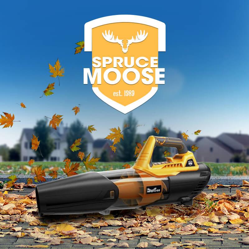 Spruce Moose – IF Mock