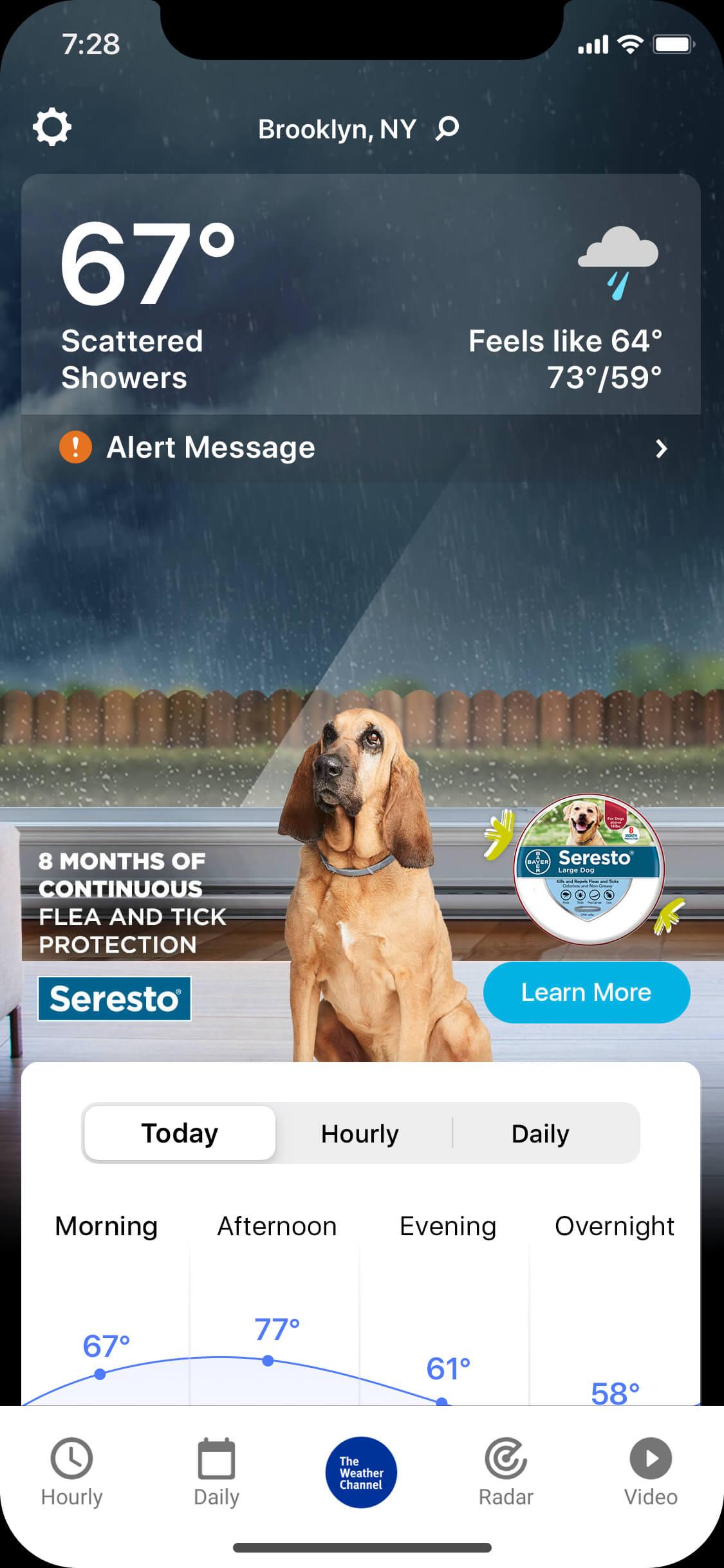 seresto_0004_rainy_day