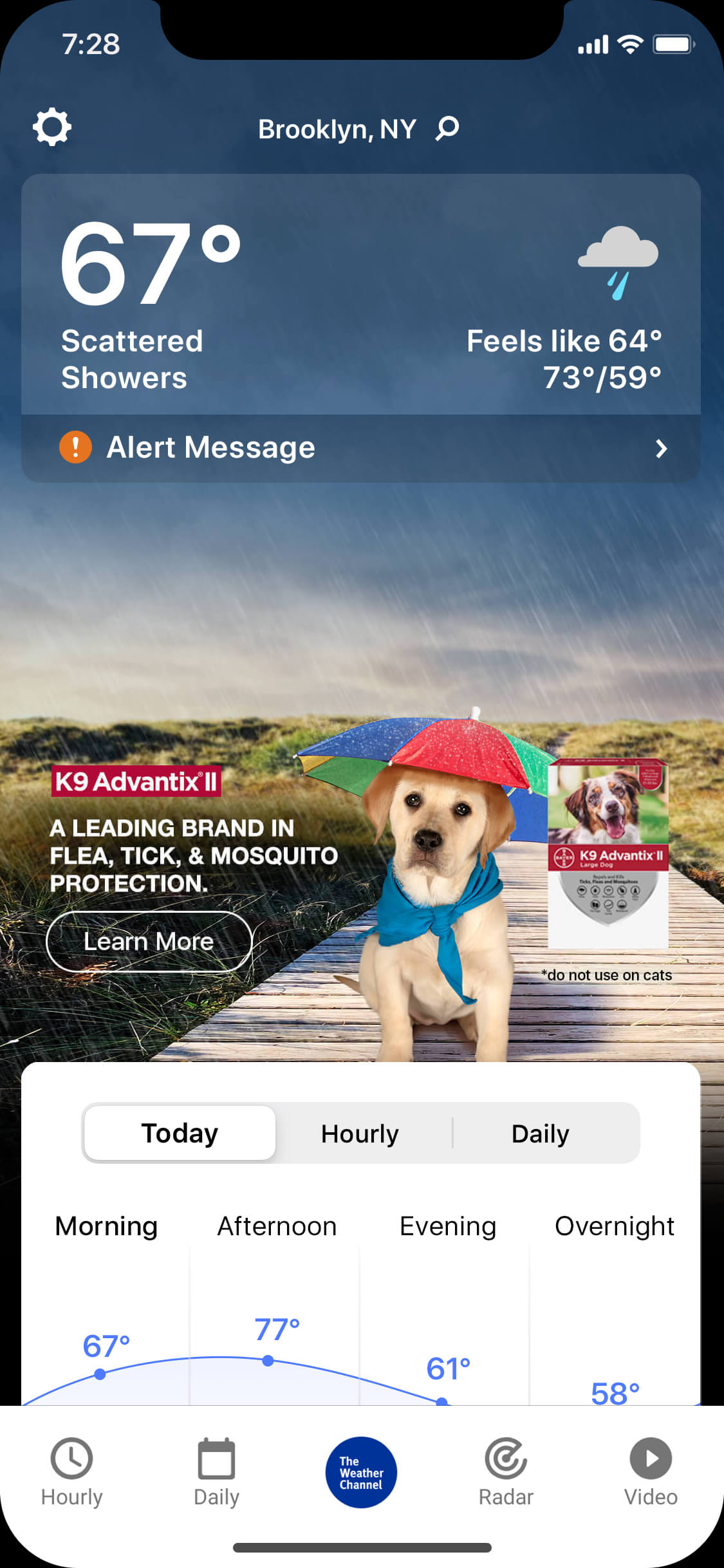 Advantix_0004_rainy_day