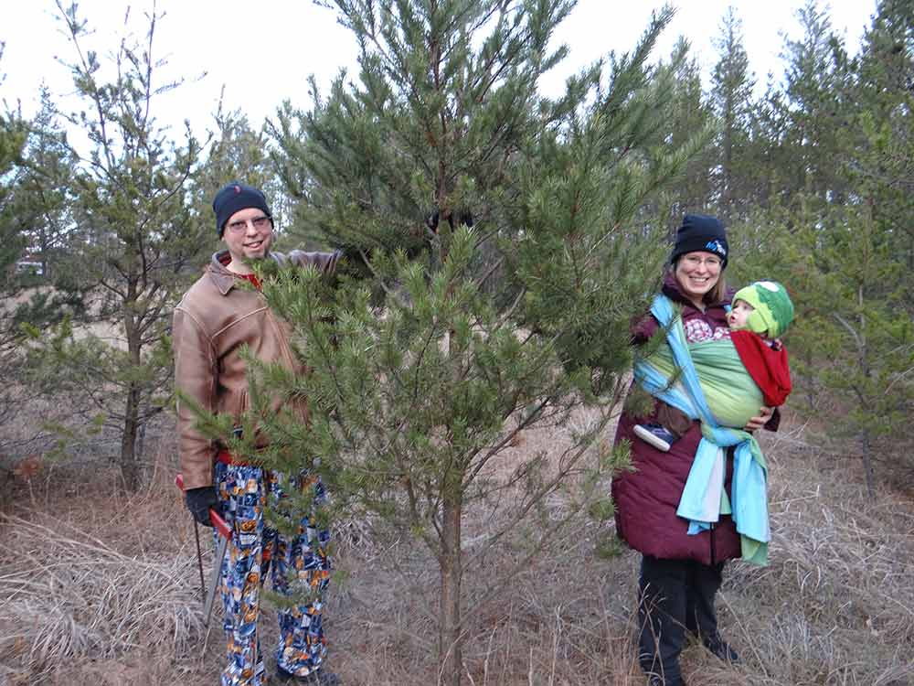 Babywearing and Picking Out a Christmas Tree